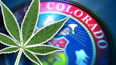 marijuana-merchant-services-co